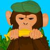 Maimuța furioasă