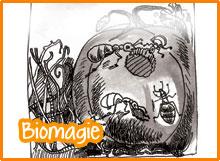 Biomagie